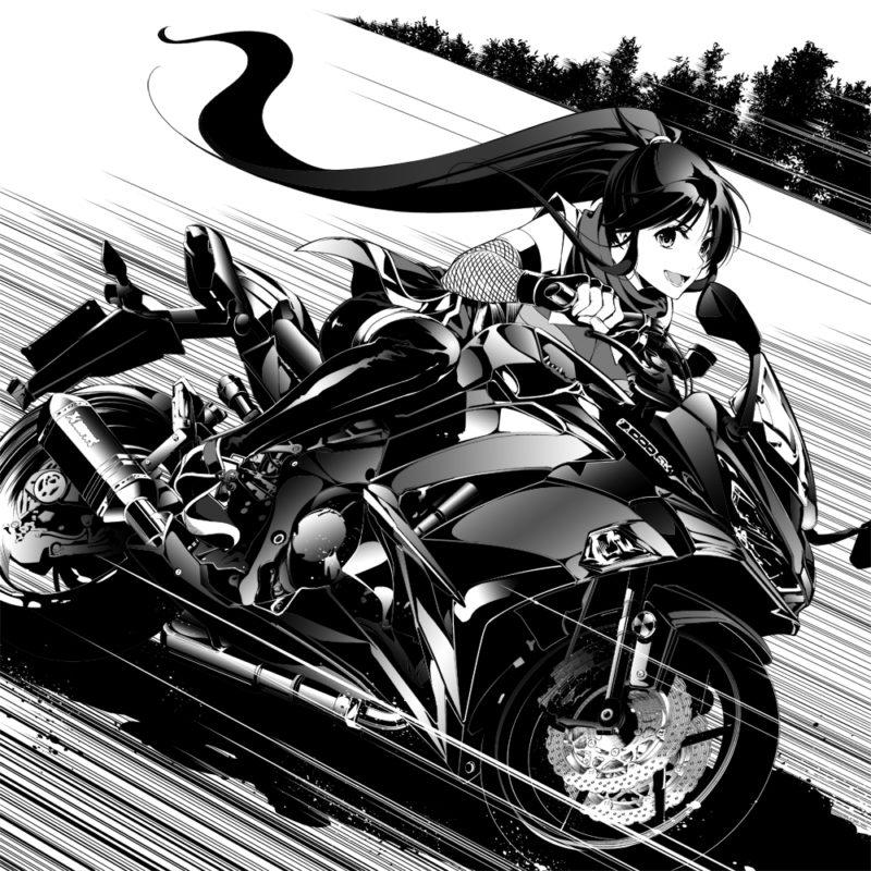 カワサキ Ninja1000(Z1000SX) 2017